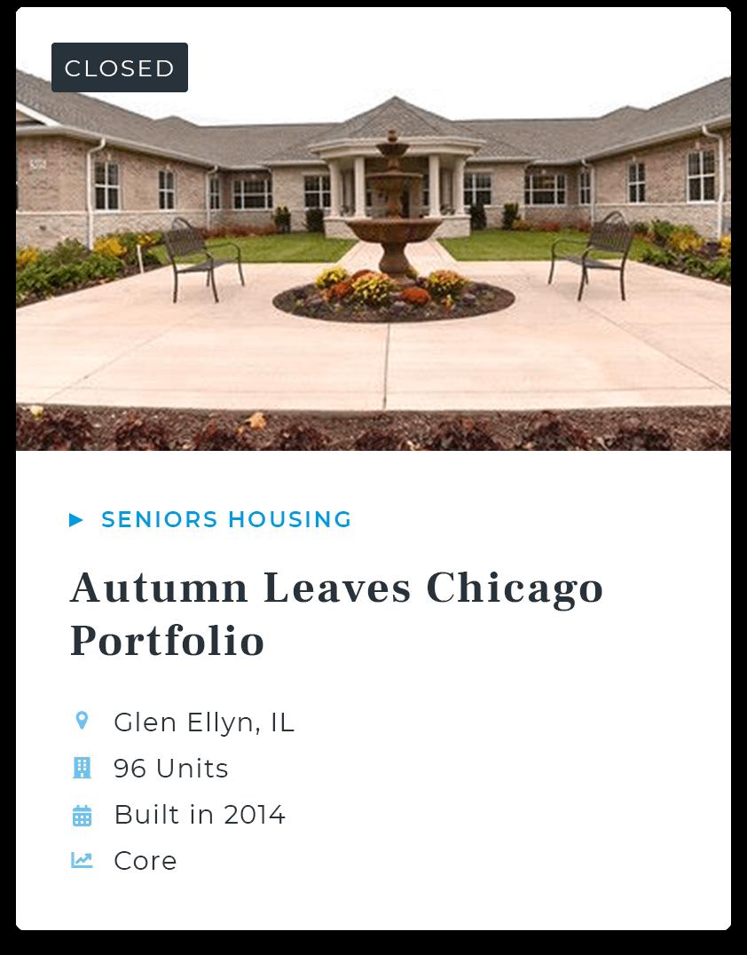 Autumn Leaves Chicago Portfolio
